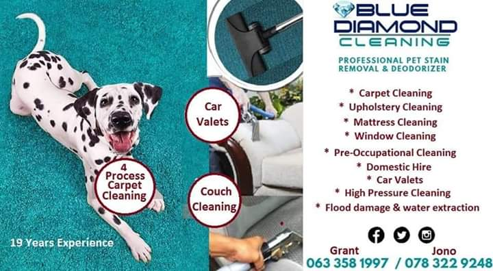Carpet,Couch & Mattress Cleaning