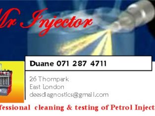 Testing and cleaning of petrol Fuel Injectors